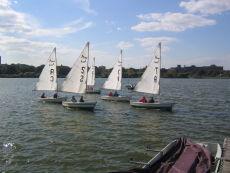 Sail On Meadow Lake
